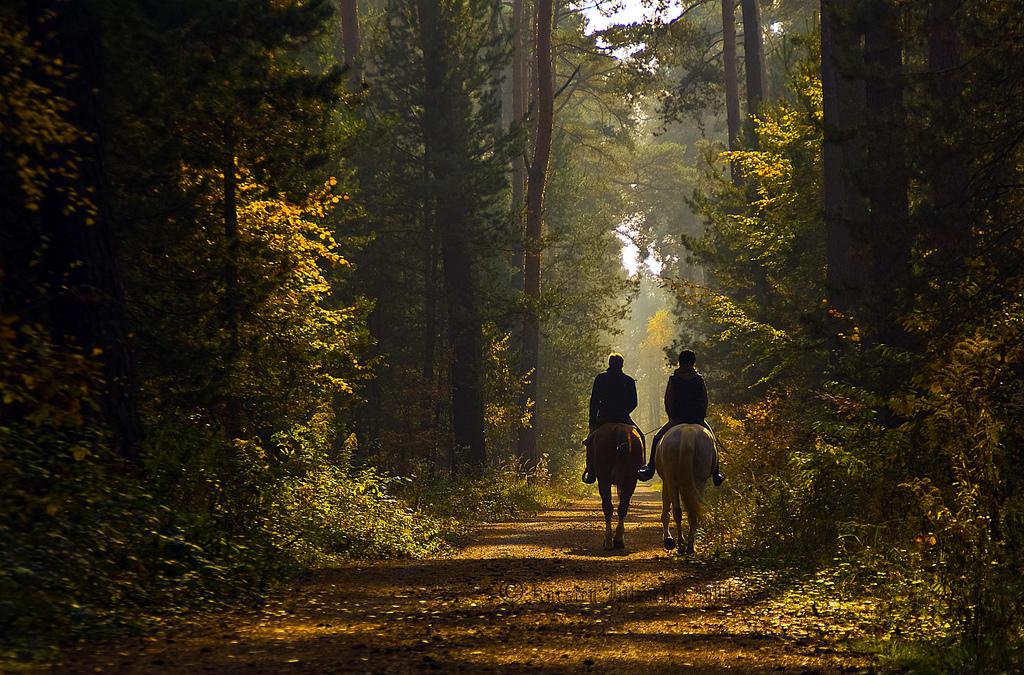 ruta a caballo por gredos